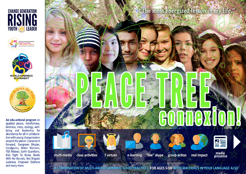 PEACE TREES CONNEXION Curriculum
