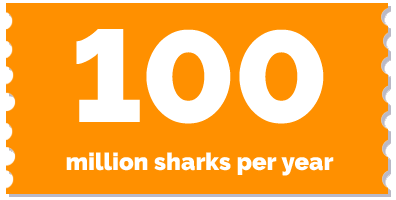 label-100 mio sharks