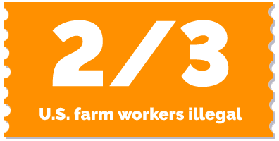 label-2-3 US farm workers illegal