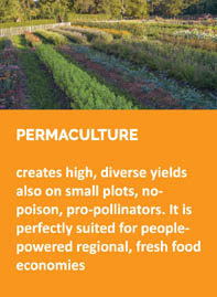 2-permaculture
